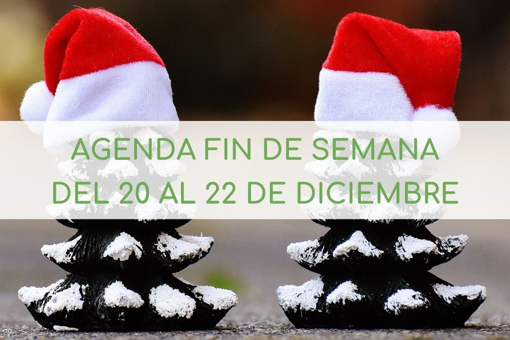 Qué hacer con niños en Castellón en Navidad